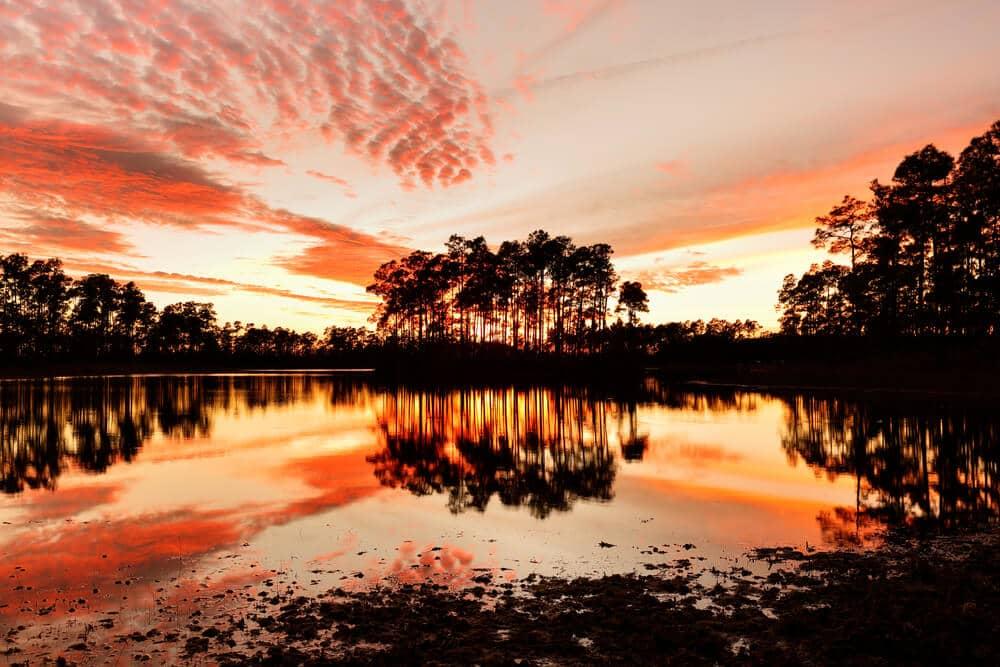 Florida Everglades at Sunset